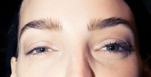 bold brow