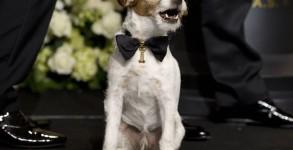Oscars 2012 - PRESS ROOM